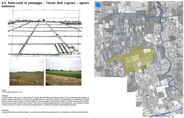 Sottounità di paesaggio, Tenuta Sioli Legnani - agrario estensivo