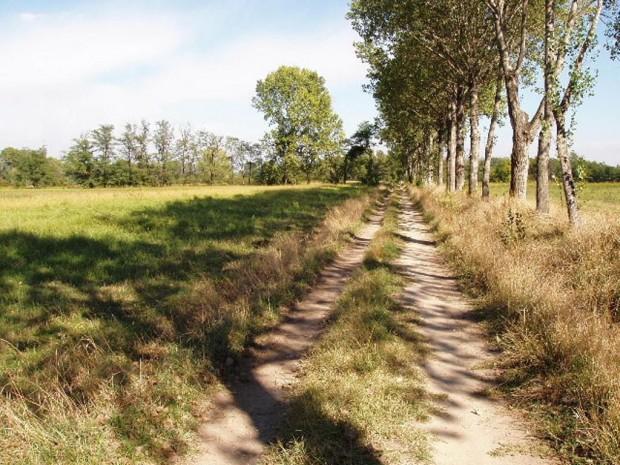 Bussero, percorso agricolo con roggia e filare
