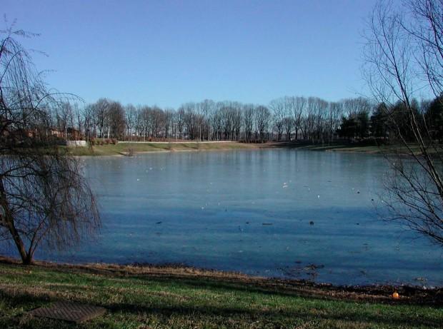 Vista del laghetto esistente