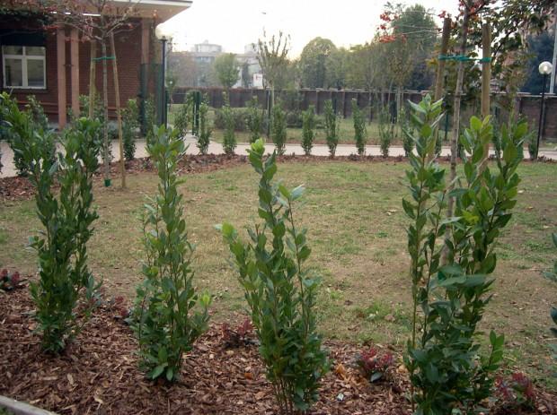2003 Materna Montessori - Ingresso