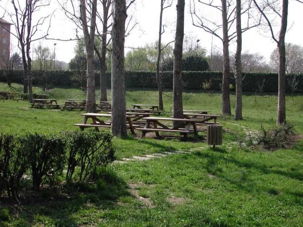 2005 Elementare Luini - Sotto i platani