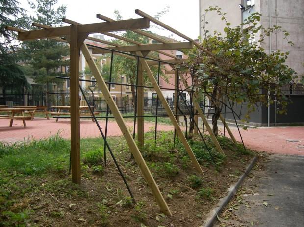 2007 Plesso Breda - Forlanini Spalliera frutta