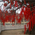 2007. Linyi County, Shandong