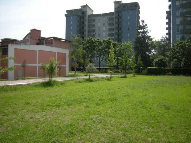2008 Scuola elementare Pascoli. Prato principale