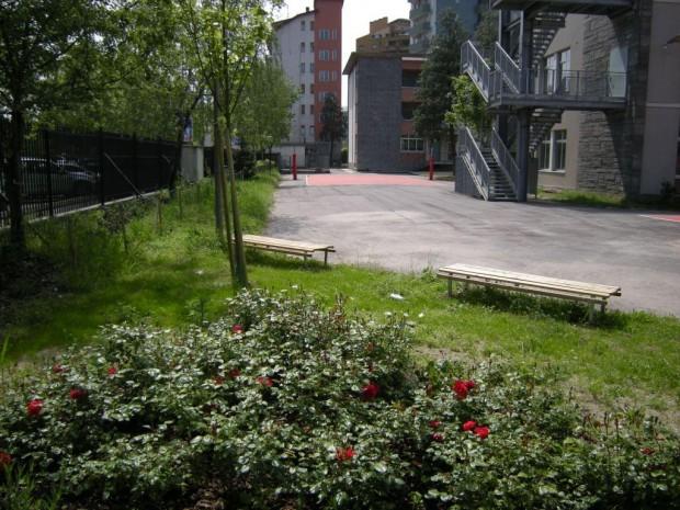 2008 Scuola elementare Pascoli. Soste